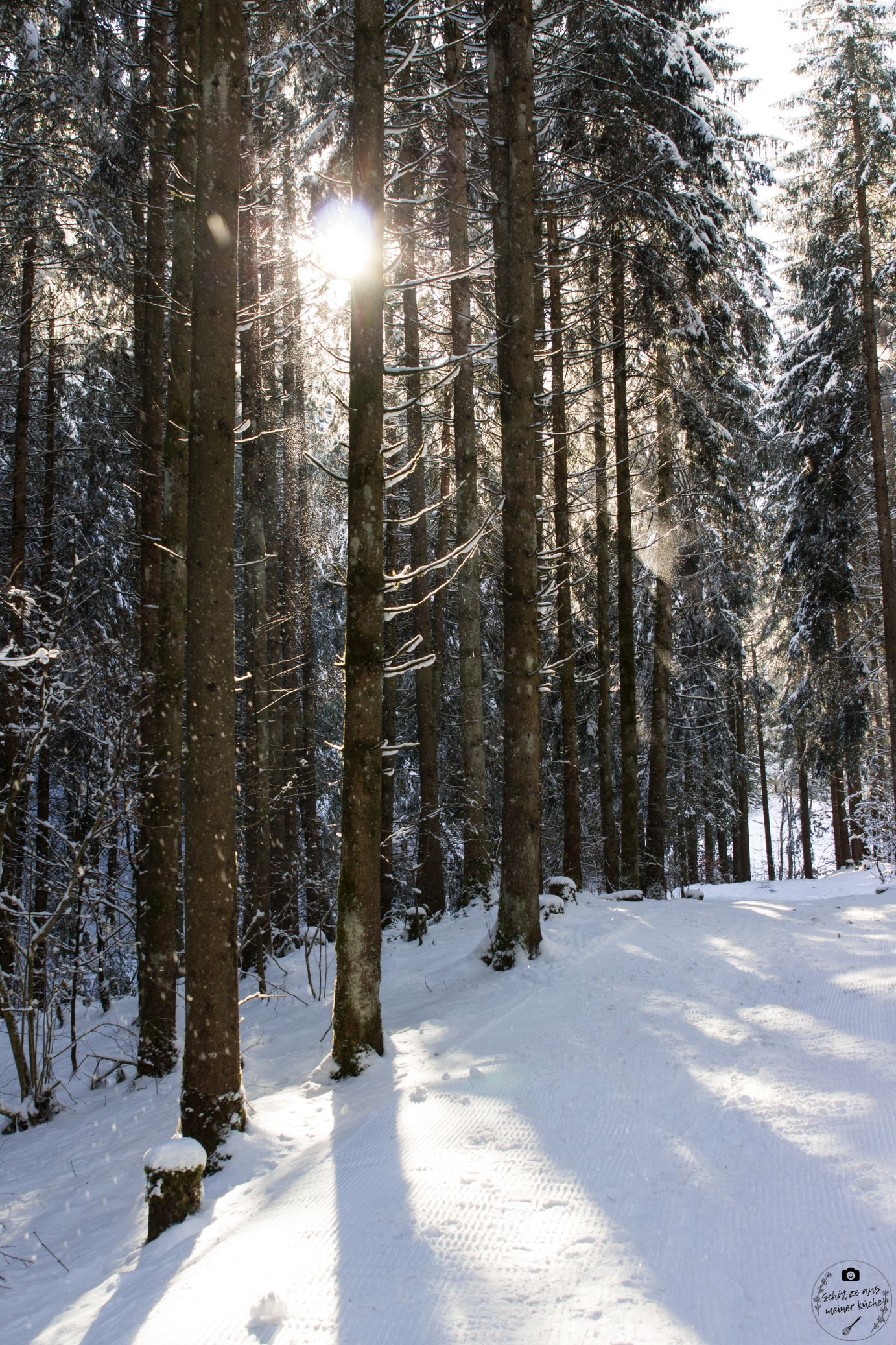 Haubers Naturresort Waldspaziergang Klimapfad